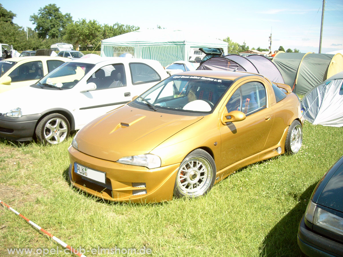 Gelsted-2005-0031-Tigra