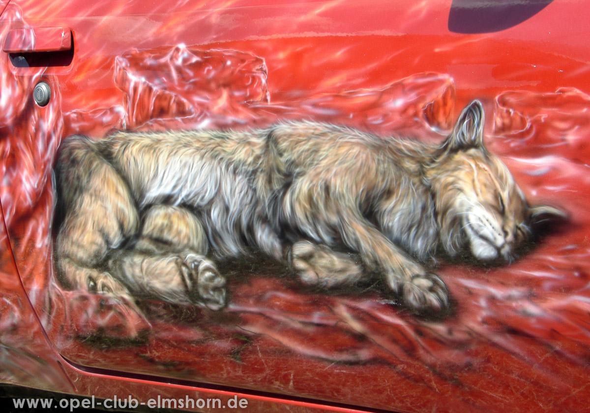 Perleberg-2008-0025-Airbrush-auf-der-Tuer