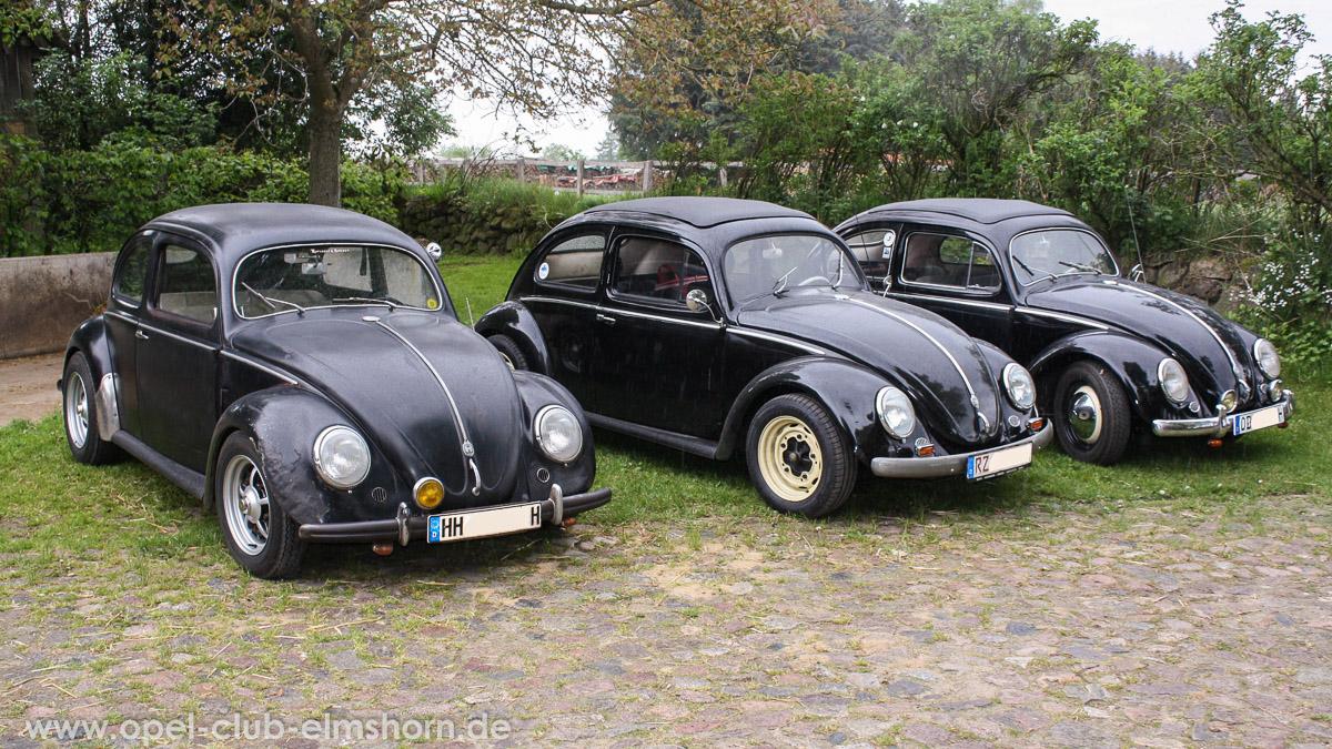 Rosengarten-2014-0045-VW-Kaefer