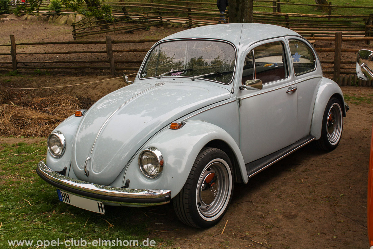 Rosengarten-2014-0048-VW-Kaefer