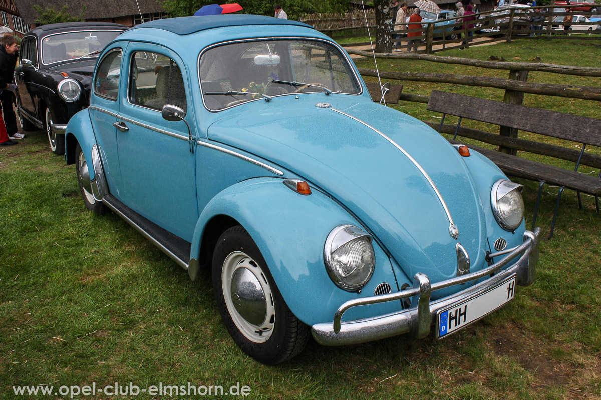 Rosengarten-2014-0060-VW-Kaefer