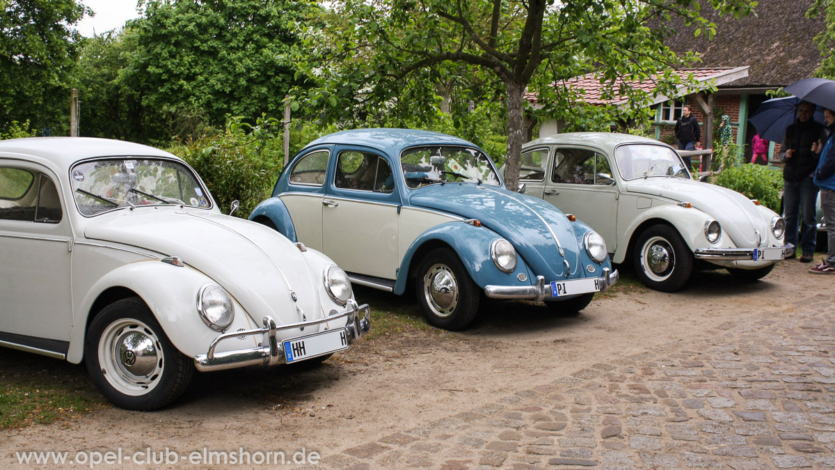 Rosengarten-2014-0108-VW-Kaefer
